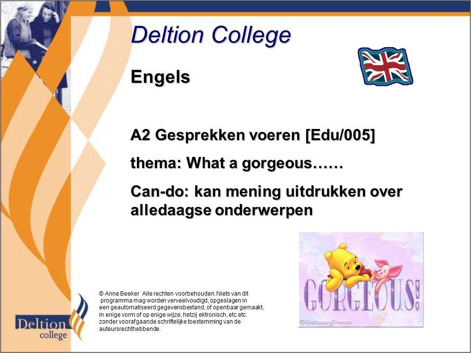 Deltion College Engels A2 Gesprekken voeren [Edu/005]